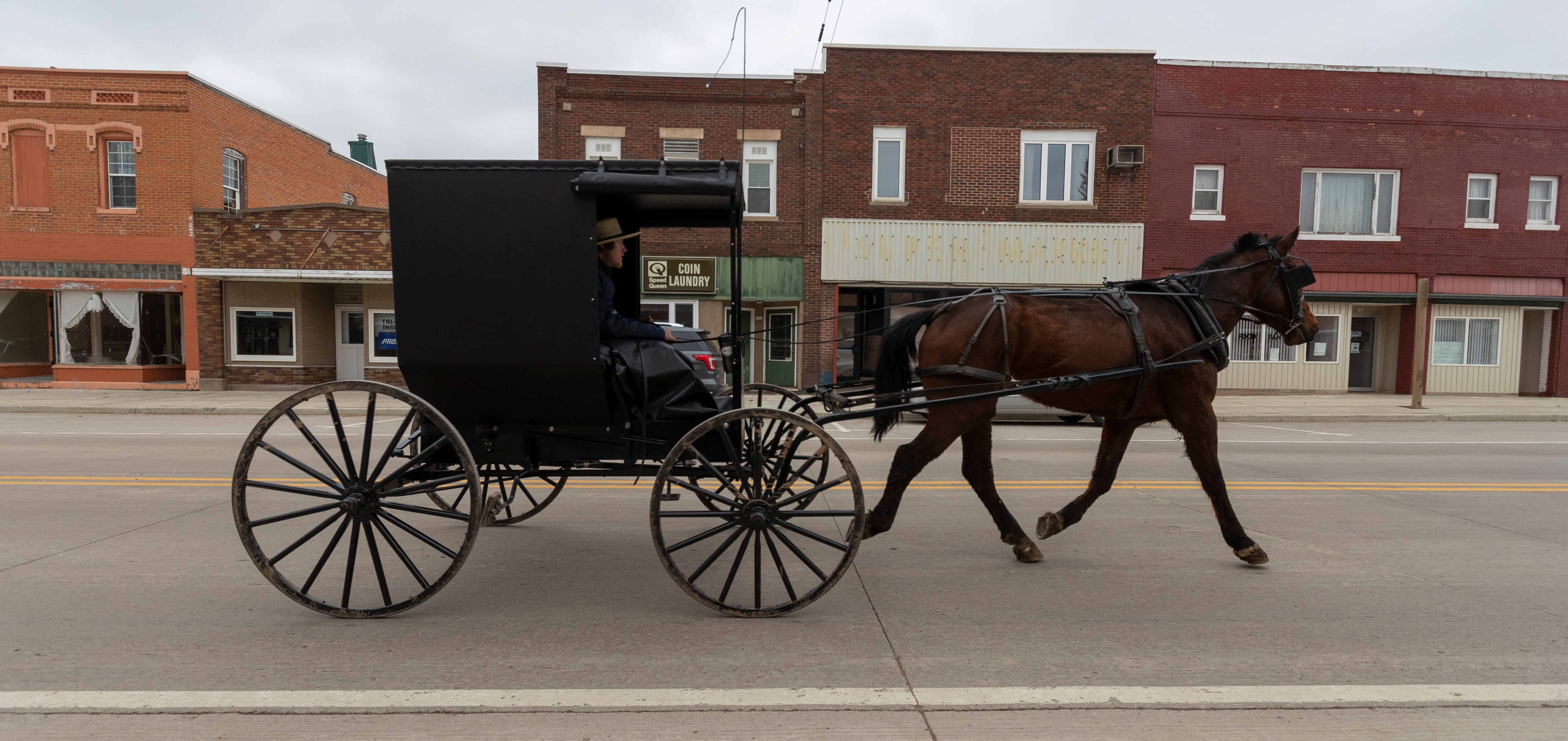 An Amish man drives a buggy  in downtown Loyal. Clark County and the surrounding area have a large population of Amish and Mennonites.