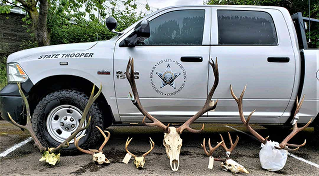Four Oregonians charged with poaching 27 big game animals could face 2,000 in fines