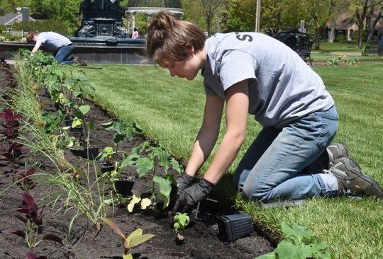 Tara Metzger of Sauk Rapids plants at Munsinger and Clemens Gardens Tuesday, May 19, 2020, in St. Cloud.