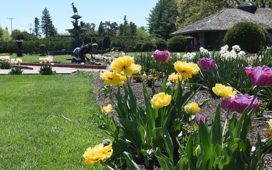 Annuals and perennials are planted at Munsinger and Clemens Gardens Tuesday, May 19, 2020, in St. Cloud.