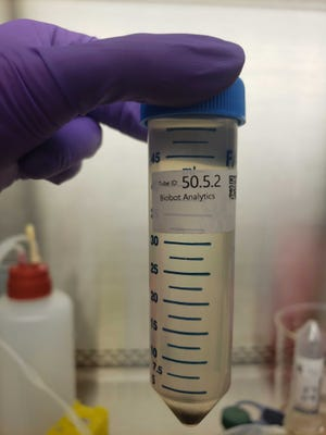 A sample of wastewater awaits testing by researchers who are studying the evidence that COVID-19 can leave in human waste.