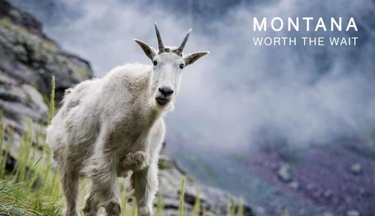 The Montana Office of Tourism and Business Development has been encouraging visitors to download Montana scenes such as this and use them as Zoom backgrounds to create a virtual #MontanaMoment until they can experience the real thing.
