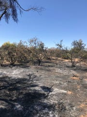 Officials said firefighters have the Peakview Fire nearly completely contained.