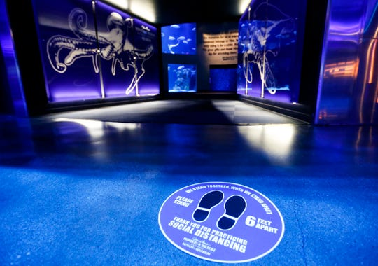 Social distancing markers on the floor at Wonders of Wildlife National Museum and Aquarium on Wednesday, May 20, 2020.