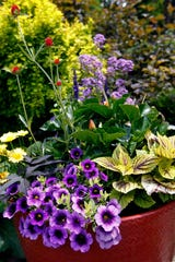 Ocean City Flower Show goes virtual this year. Everyone is invited to enter photos of their gardens and floral arrangements.