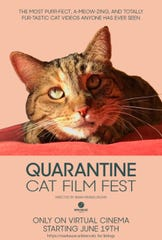 The Quarantine Cat Film Fest, which includes cat video clips submitted by fans, will premiere online June 19. Ticket sales will help support independent movie theaters closed due to COVID-19. Visit rowhouse.online/cats.