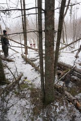 A Michigan Department of Natural Resources conservation officer checks snares investigators say Duncan used to illegally capture animals.