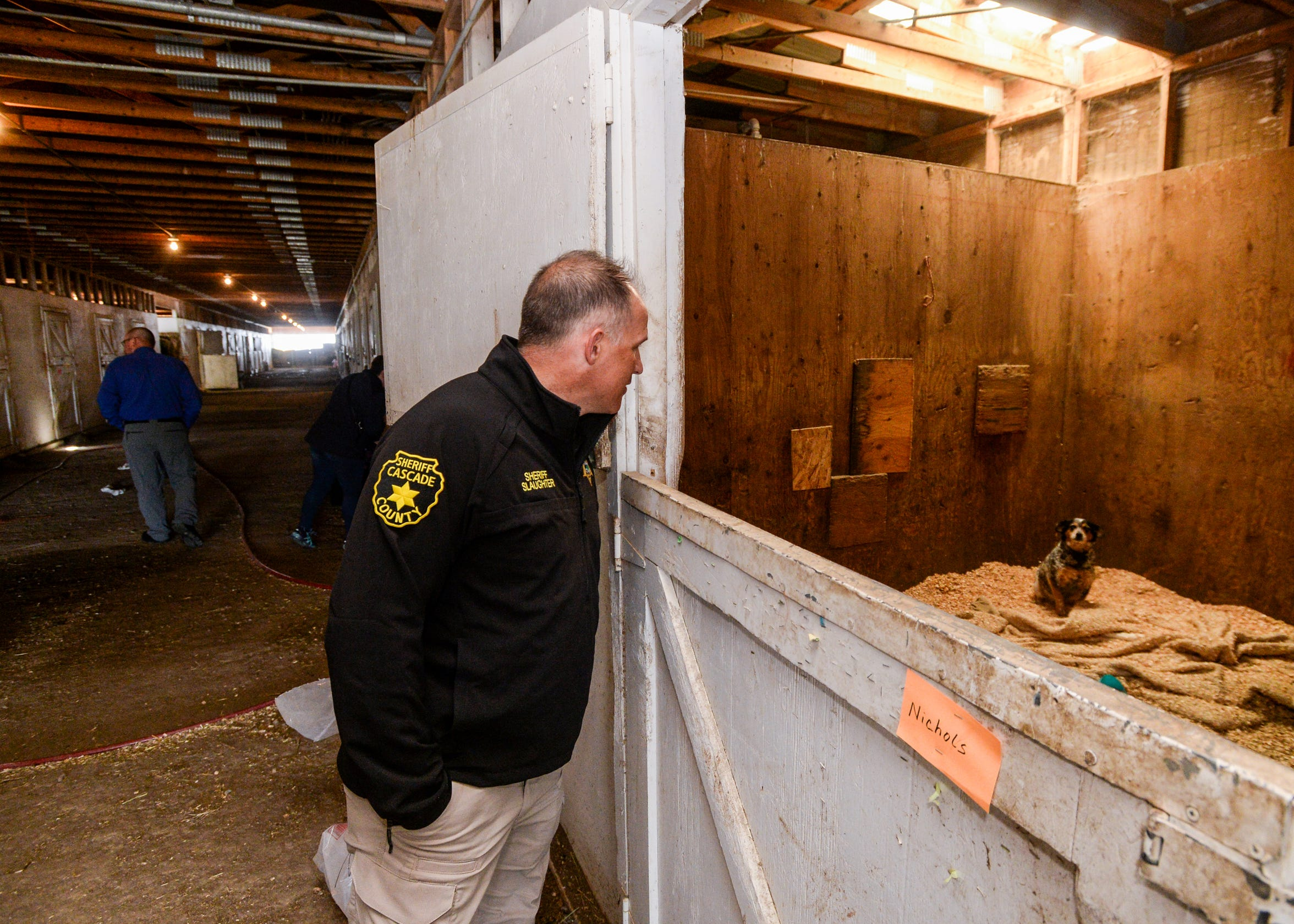 Cascade County Sheriff Jesse Slaughter tours a barn where his office is caring for animals seized from Pamela Jo Polejewski on charges of animal cruelty. 176 animals were seized from Polejewski after a fire gutted a trailer and outbuildings west of Great Falls in early May.
