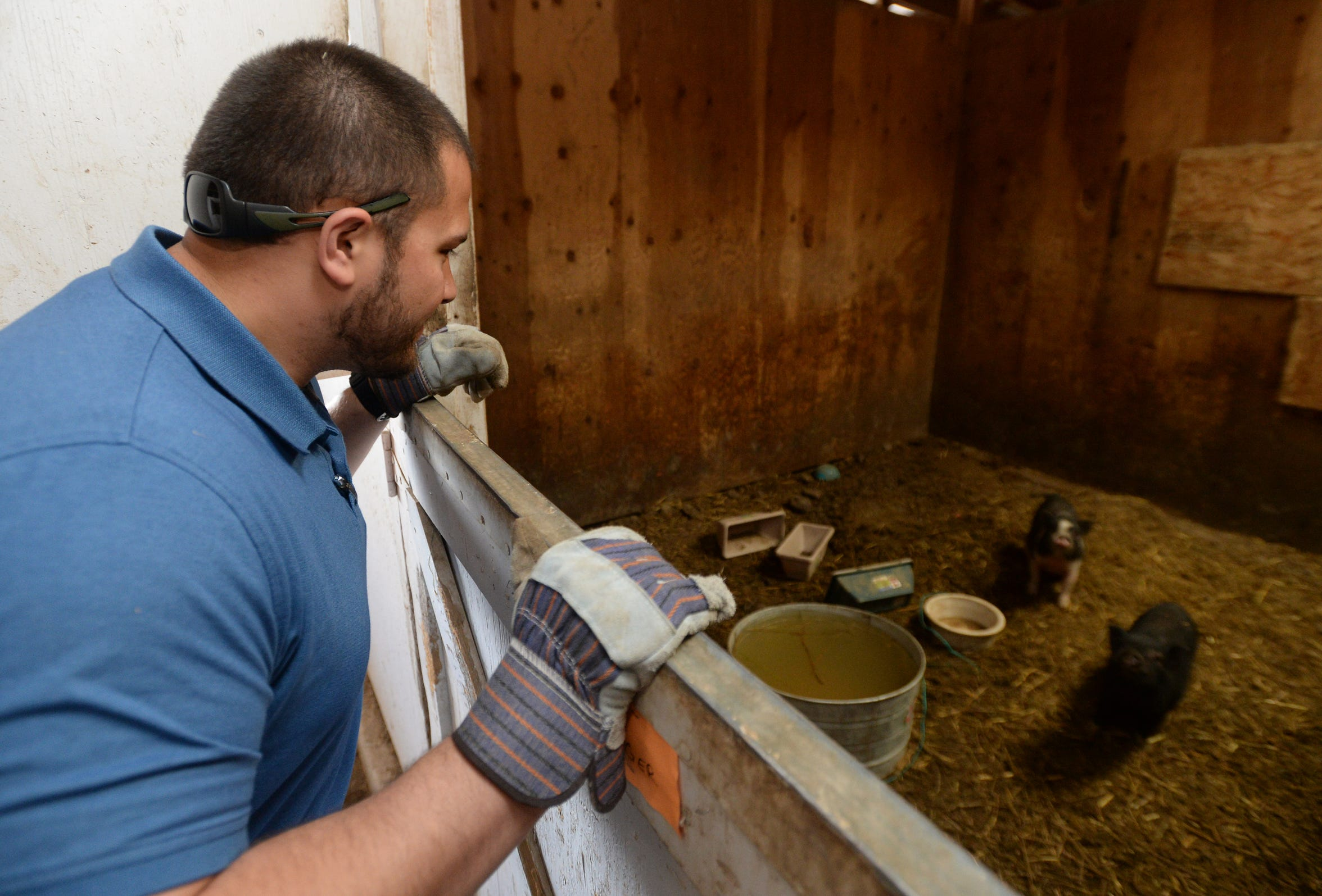 Detective Mike Krause of the Cascade County Sheriff's Office is helping care for the 176 animals seized from Pamela Jo Polejewski.  Polejewski has been charged with animal cruelty after animals were found in poor living conditions on Polejewski's property west of Great Falls.