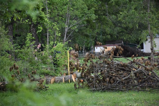 Authorities are digging as well as cutting trees and brush in the backyard of the Daniels' home Thursday. Authorities obtained a search warrant.
