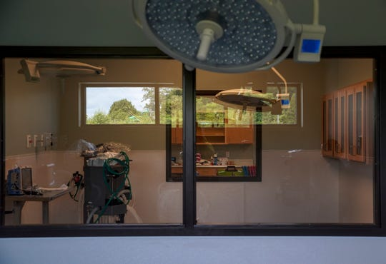 A window in the second operating room faces the first, which is viewable through a further window at Nashville Veterinary Specialists and Animal Emergency in Clarksville, Tenn., on Friday, May 22, 2020.