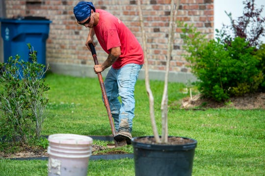 Tad Dupuy and his crew at Lafayette Landscape working on landscaping in Lafayette, LA.  Friday, May 22, 2020.