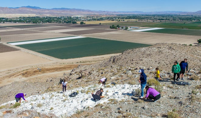 """Volunteers, including Yerington High School seniors, pick up trash at the """"Y"""" during the Y Hill Cleanup Day."""