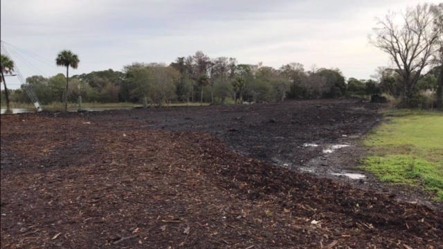 Property in North Fort Myers used by MW Horticulture Recycling as storage for debris from Hurricane Irma shows it as cleared. Lee County has filed a foreclosure lien against the property MW has been operating on claiming a code violation exists on the property connected to the debris.