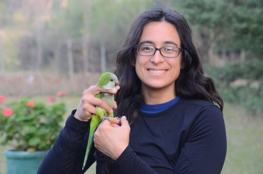 Grace Smith-Vidaurre, NMSU Ph. D. student, shown here releasing a monk parakeet in Uruguay. Vidaurre received the prestigious NSF Postdoctoral Fellowship to begin next year after she receives her doctorate from NMSU in December.