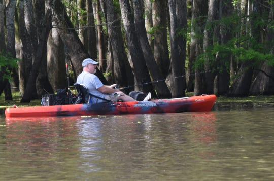 Members of Cenla Hikers & Paddlers paddled and kayak fished in Cocodrie Lake near Forest Hill Saturday, May 2, 2020. The group is made up of hiking and paddling enthusiasts who schedule events on the Cenla Hikers & Paddlers Facebook page. The group explores area lakes and hiking trails in the area.