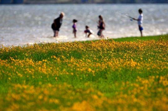 A family plays along the shore of Lake Fort Phantom Hill as wildflowers bloom in the afternoon sun Saturday.