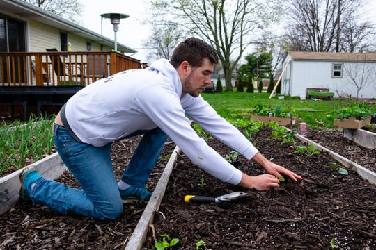 Luke Marion, owner of MIGardener, takes a few minutes to plant a few sprouts for cabbage, beans and a tomato plant in separate beds. (Brian Wells/The Times Herald via AP)