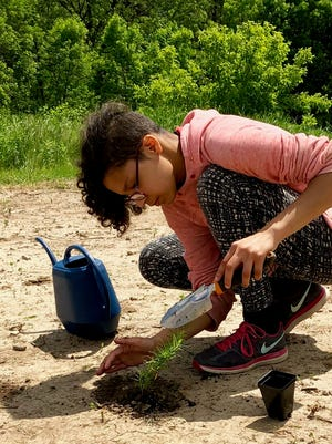 Despite school closures, a group of teachers and their students are helping imperiled insect pollinators and Monarch butterflies.