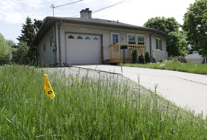 Complaints of tall grass and weeds are increasing as Appleton nears the end of its No Mow May initiative.