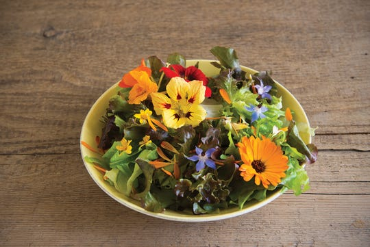 Nasturtiums, borage, marigolds and calendula flowers turn an ordinary salad into a colorful feast. These annual plants are easy to grow from seed, and they will bloom and produce lots of flowers all summer long.
