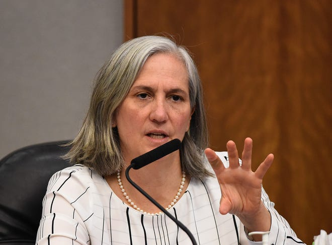 Council member Jenny Brekhus, ward 1, speaks durning a council meet on March 4, 2020.