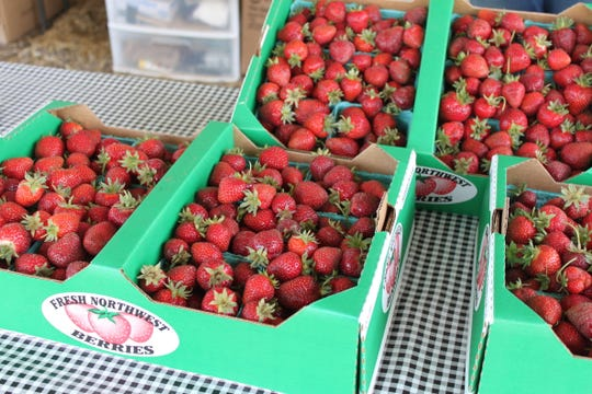 Strawberriesat Koch Family Farm in St. Paul on May 22, 2020. To continue offering pick-your-own strawberries in the midst of the coronavirus pandemic the farm is recommending people wear masks and requiring they maintain social distancing recommendations in the farmstand.