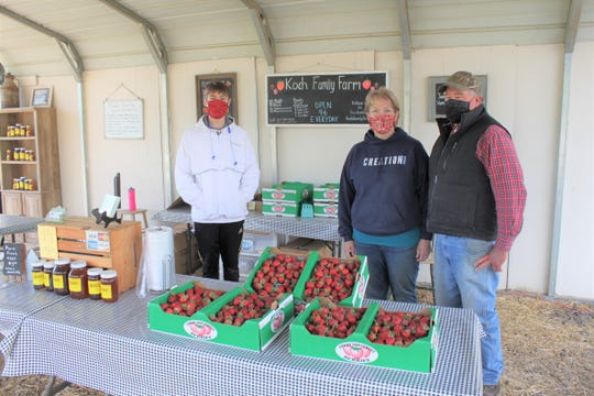 Owners Kay and Ron Koch (right) and u-pick worker Jackson Cook (left) at Koch Family Farm in St. Paul on May 22, 2020. To continue offering pick-your-own strawberries in the midst of the coronavirus pandemic the farm is recommending people wear masks and requiring they maintain social distancing recommendations in the farmstand.