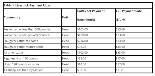 A payment for the highest inventory of unpriced livestock between April 16, 2020 and May 14, 2020.  In both cases, the number of head are multiplied by the relevant payment rate show in Table 1.