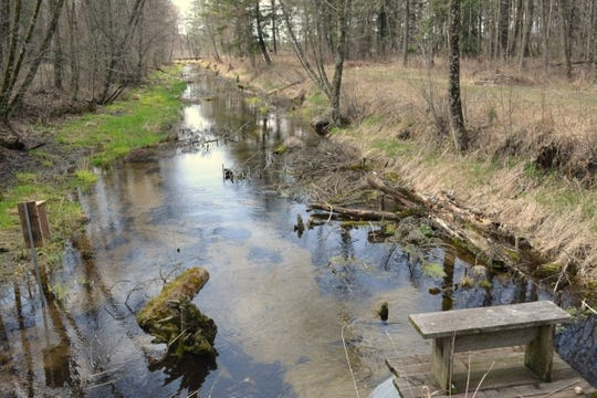 Isherwood Lateral and the half-mile stretch Donald Justin Isherwood has converted into a trout habitat.