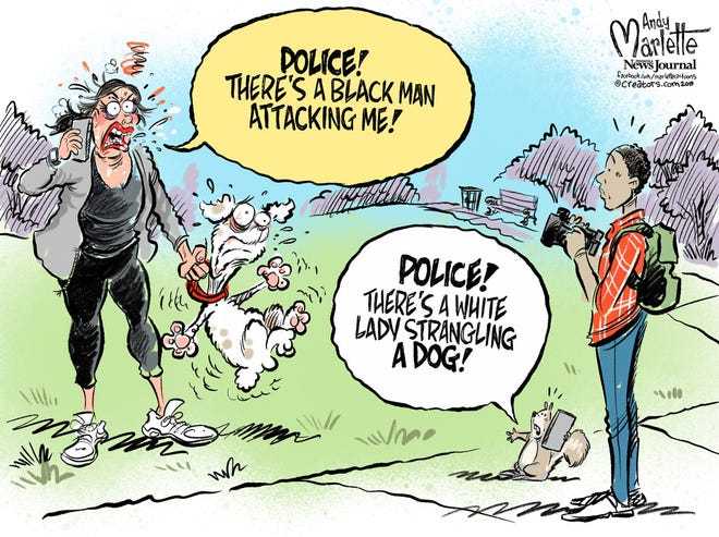 Racial confrontation in park.