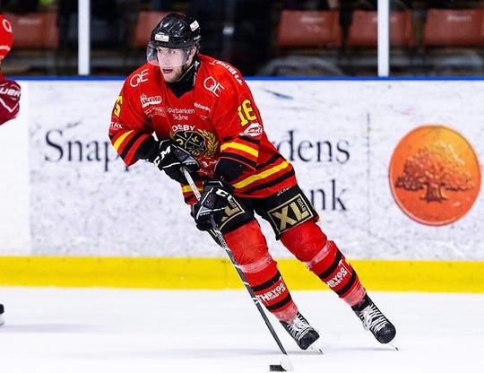 Alex Koopmeiners, a graduate of St. Cloud Cathedral, has played professional hockey in Sweden the past three years after graduating from Gustavus in 2017.