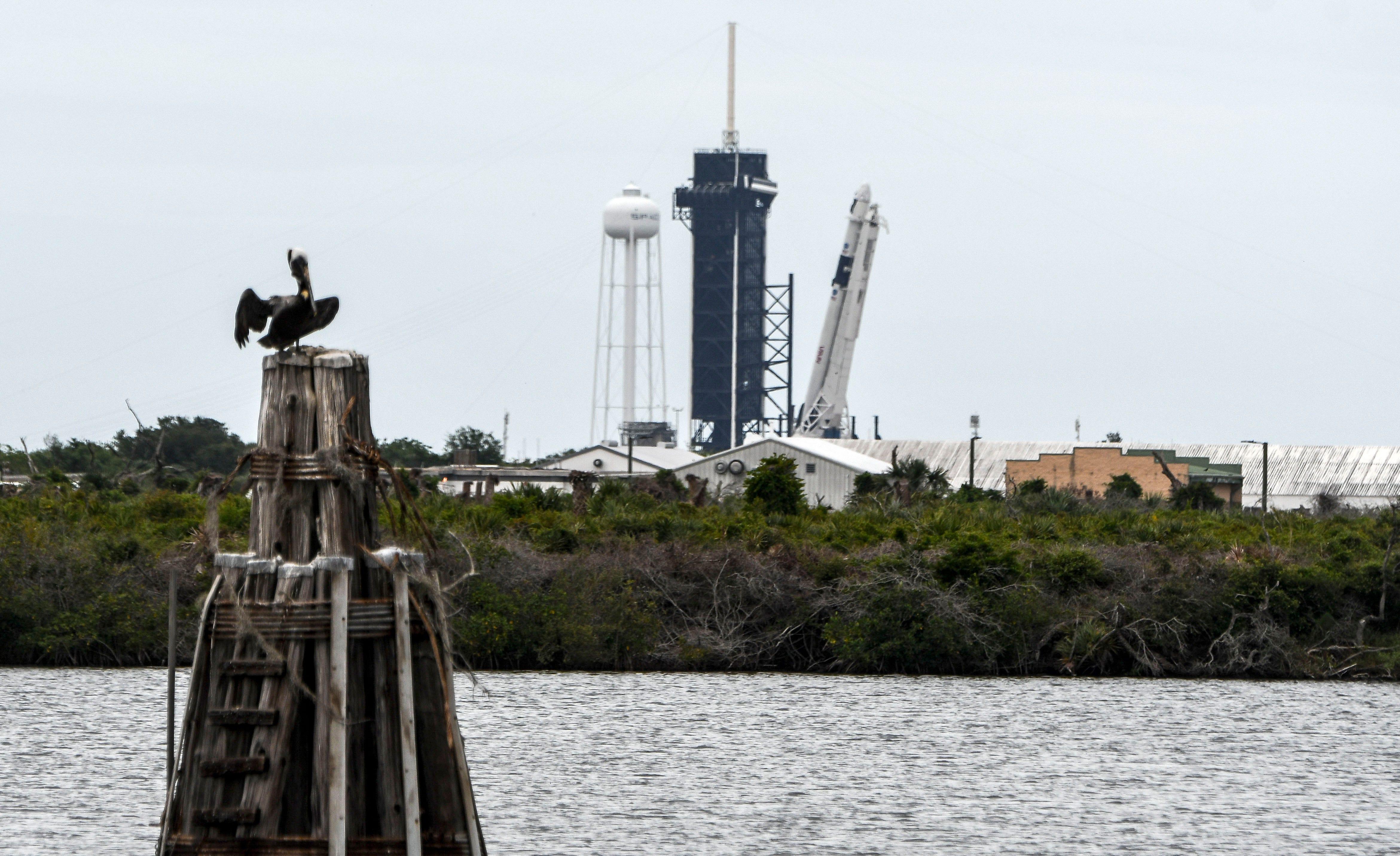 SpaceXs Falcon: How to watch NASA`s launch of`u00a0Bob Behnken,...