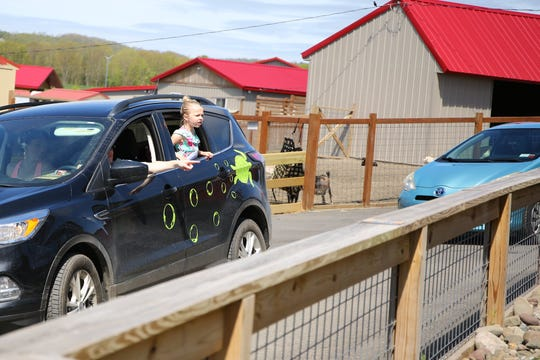Animal Adventure Park re-opened as a drive-thru zoo on May 21, 2020. It will soon re-open to foot traffic, with the drive-thru zoo operating one morning a week.