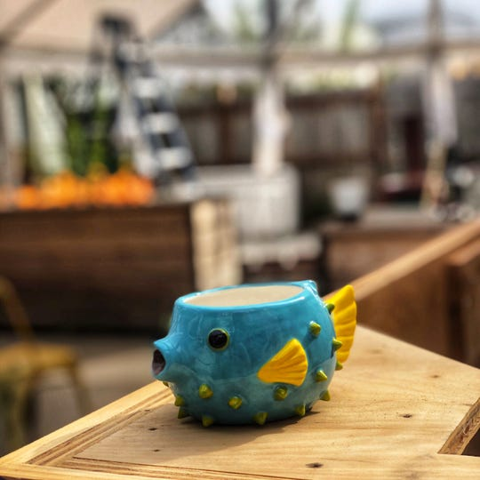 A pufferfish tiki mug for PufferFish, the pop-up tiki bar planned behind Lost Whale bar at 2151 S. Kinnickinnic Ave. in Bay View. The pop-up is expected to be a preview of a future brick-and-mortar bar by the Lost Whale crew.