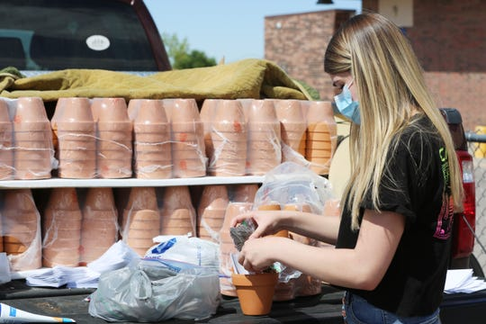 Lexi Wilson, 15, was helping her sister Devin Wilson, 17, who was recently crowned as Teen Miss New Mexico Earth, put together mini planters at Picacho Middle School, Thursday May 28, 2020.