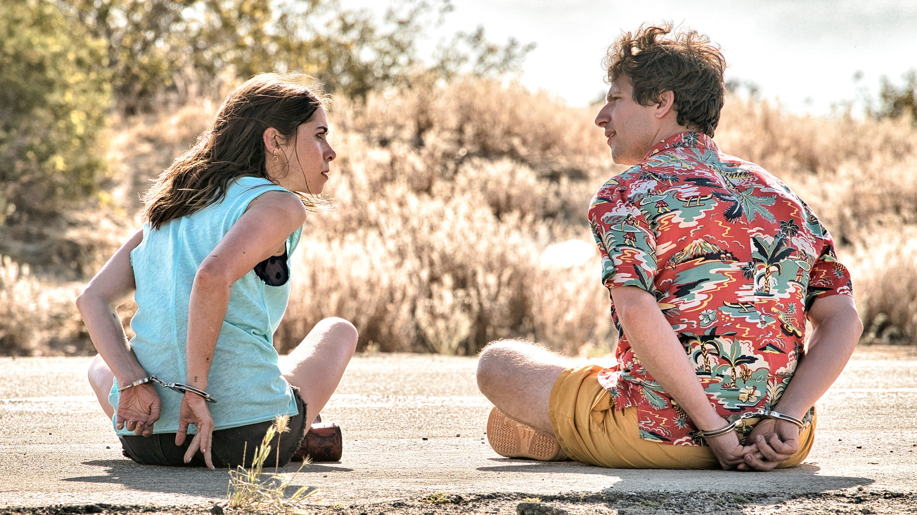 Andy Samberg film 'Palm Springs' to premiere July 10 on Hulu, at ...
