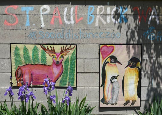 Animals are on display on Frankie Piccirilli's Social Distance Zoo, Tuesday, June 2, 2020. The art display is a series of 24 paintings of animals that she created and has displayed on a brick retaining wall outside her home. It's become an attraction for neighbors and passers-by.