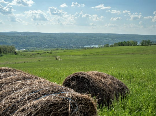 The Finger Lakes Land Trust has obtained conservation easements to protect more than 500 acres of land along Seneca Lake.