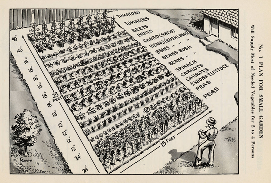 A detailed map of an example victory garden from a Department of Agriculture pamphlet.