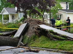 A fast moving thunderstorm ripped through South Jersey on Wednesday afternoon causing several large trees to fall in Hammonton. June 3, 2020.