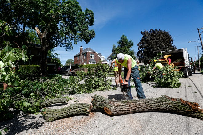 City of Fond du Lac Public Works' Nick Dilts uses a chainsaw Wednesday, June 3, 2020, to help remove part of a tree from Champion Avenue in the city of Fond du Lac. A severe thunderstorm with strong winds went through the area Tuesday night knocking down trees and wires throughout the county.