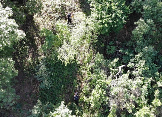 Thicket where Redding police and firefighters rescued a 4-year-old child who fell down 70 feet down an embankment near the Sacramento River on Wednesday, June 3, 2020.