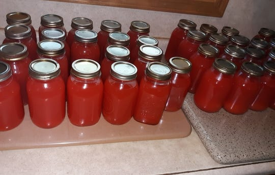 Lovina has been canning juice from this year's large rhubarb harvest.