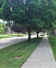 One of the longer sidewalks in the Lake Pointe subdivision.
