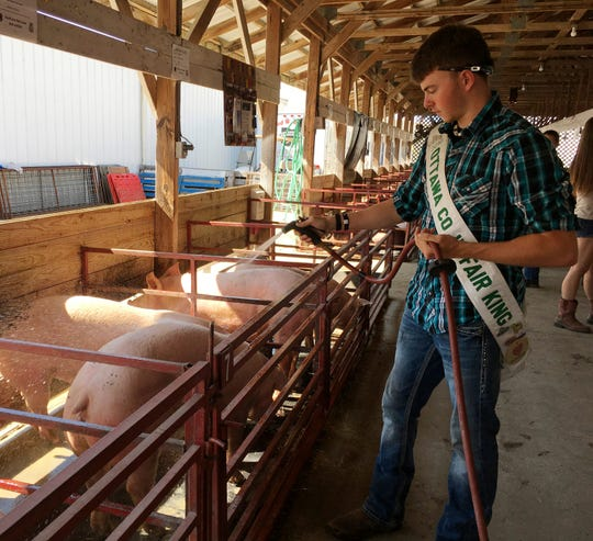 T.J. Hartman, who was named Ottawa County Fair King in 2017, sprays water on his pigs.