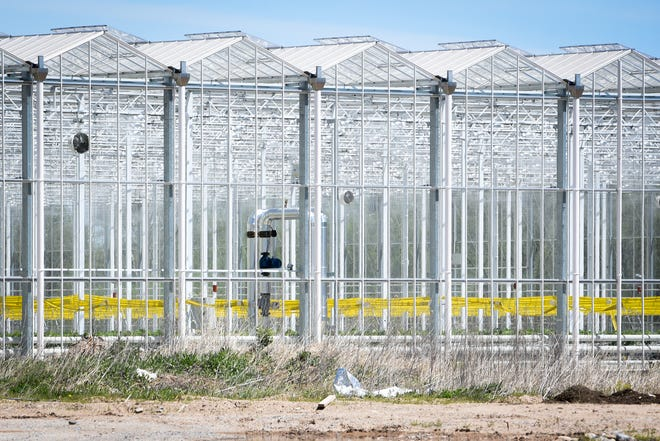 173 workers at the Green Empire Farms greenhouse in Oneida tested positive for COVID-19 in early May.