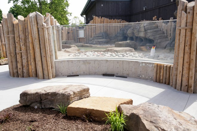 Inside the soon to be complete African penguin exhibit at the Columbian Park Zoo, Friday, June 5, 2020 in Lafayette.