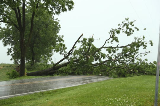 A second night of heavy wind and rain downed trees in the region. This large tree blocked West Canal Road near Jacob's Mill Road in Paradise Township.