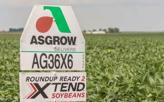 Controversial herbicide dicamba no longer legal, federal court rules leaving about 60 million acres of crops affected.